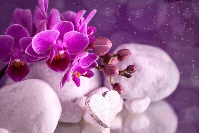 Naklejka Orchidea miłość