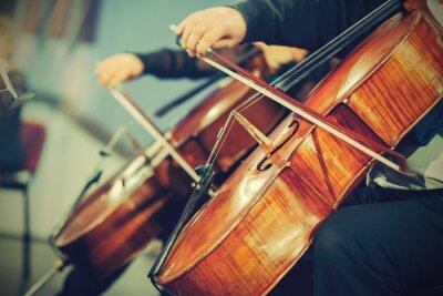 Naklejka Orkiestra symfoniczna na scenie, grając na wiolonczeli rąk