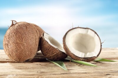 Naklejka orzech kokosowy