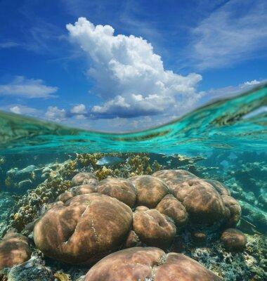 Naklejka Over-under niebo chmury i podwodne rafy koralowej