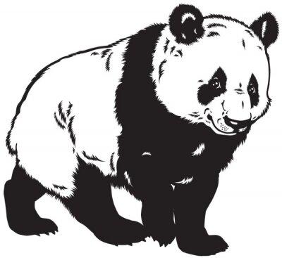 Naklejka panda czarno-białe