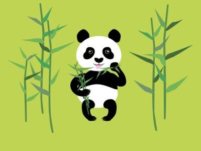 Naklejka Panda i bambusa