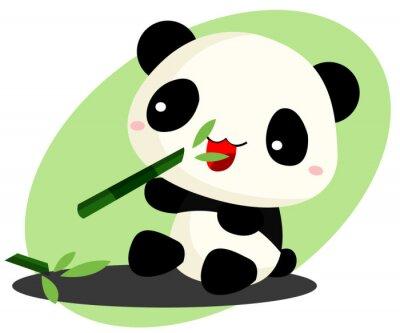 Naklejka Panda jedzenie bambusa