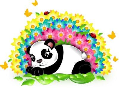 Naklejka Panda z tęczy