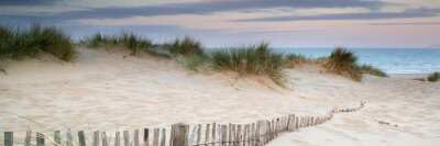 Naklejka Panorama landscape of sand dunes system on beach at sunrise