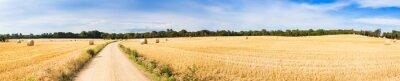 Naklejka Panorama pola słomy