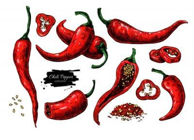 Naklejka Papryka chili ręcznie rysowane ilustracji wektorowych. Warzywa artystycznym stylu obiektu. Pojedyncze gorąco pikantne