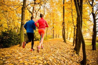 Naklejka Para jogging w jesiennej przyrody