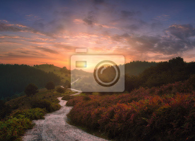 Naklejka path in the mountains with beautiful sunset