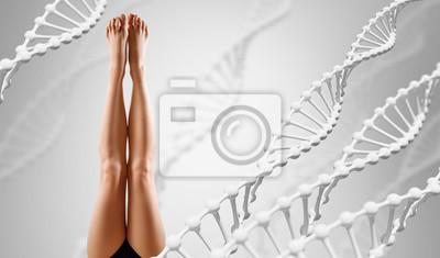 Naklejka Perfect female legs among DNA stems over gray background.