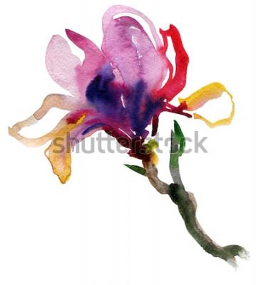 Naklejka piękna ilustracja Ręcznie malowane akwarela kwiatu magnolii. wektor.