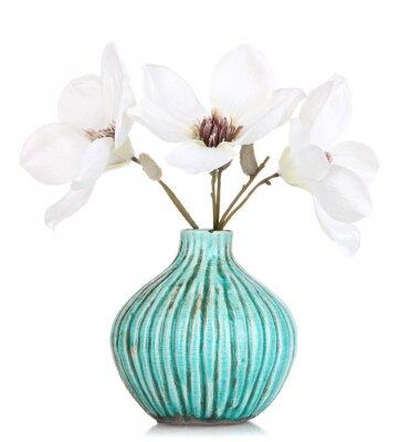 Naklejka Piękna magnolia w wazonie na białym tle