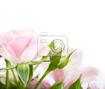 Piękne róże w stylu retro, kwiaty, kwiatów tle