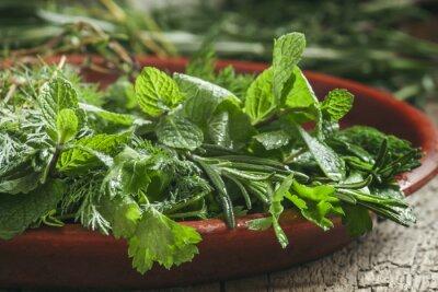 Naklejka Pikantne zioła w naczyniu glinianym, selektywnym focus