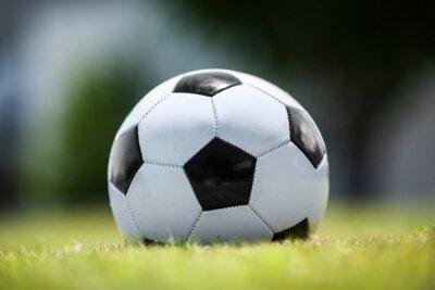 Naklejka Piłka nożna na zielonym trawniku