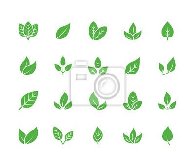 Naklejka Płaski glif ikony. Rośliny, ilustracje liści drzew. Znaki żywności ekologicznej, materiału naturalnego, biokomponenta, godła ekologicznego. Piksel o stałej sylwetce idealny 64x64.