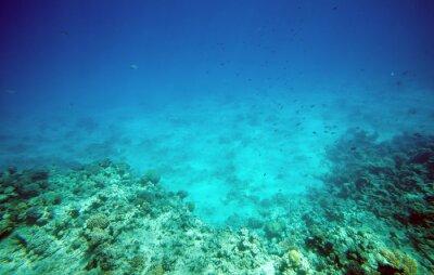 Naklejka Podwodny