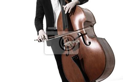 Naklejka Podwójny odtwarzacz basowy. Ręce grając kontrabas