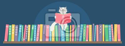 Naklejka Półka na książki z fantazji siedzi kot ręcznie rysowane biały czytanie książki.