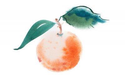 Naklejka Pomarańczowy akwarela akwarela ręcznie rysowane na białym tle