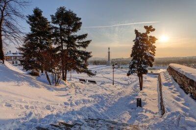 Pomnik Wiktora pod śniegiem