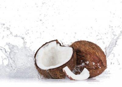 Naklejka Popękane kokosy na białym tle