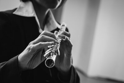 Profesjonalne flecista graczem w pojedynkę