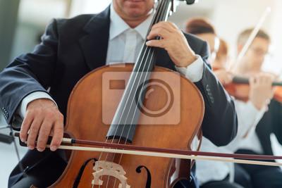 Profesjonalne wiolonczelistka