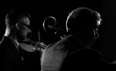 Professional musicians playing a classical music concert
