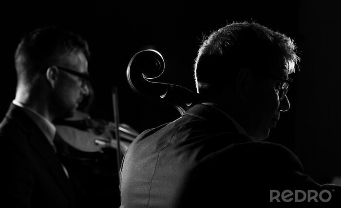 Naklejka Professional musicians playing a classical music concert