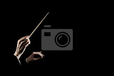 Naklejka Prowadzenie dyrygentury orkiestry. Ręce dyrygenta z batutą