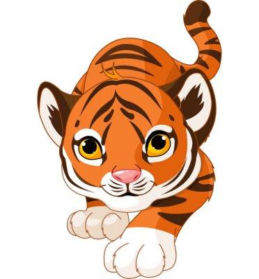 Naklejka Przyczajony tygrys dziecka