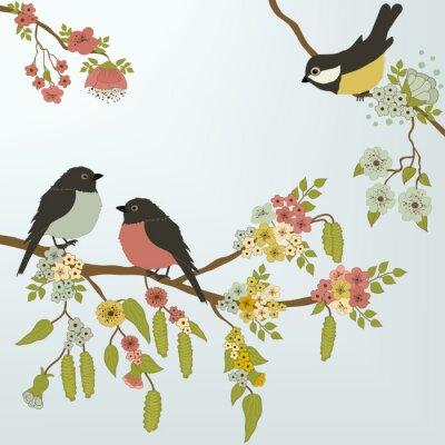 Naklejka ptaki