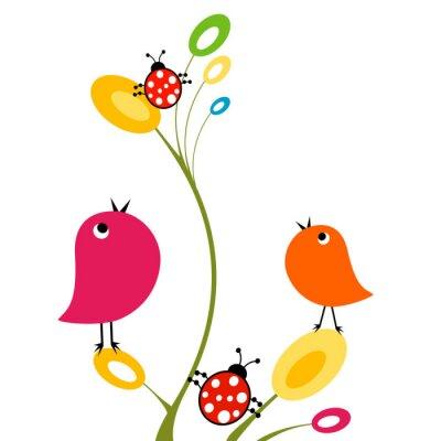 Naklejka ptaki i biedronki