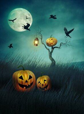 Naklejka Pumpkin scarecrow in fields of  grass at night