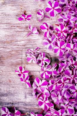 Naklejka purpurowe kwiaty