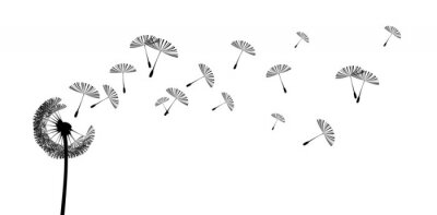 Naklejka pusteblume2606b