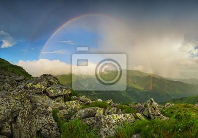 Naklejka Rainbow pod grzbiet.