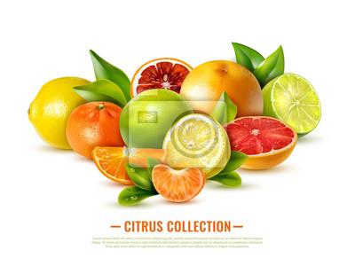 Naklejka Realistyczna ilustracja owoców cytrusowych