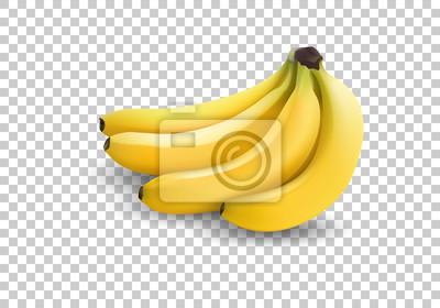 Naklejka realistyczny ilustracja banany, 3d wektorowe ikony. Banan odizolowywający na białym tle, bananowa ikona