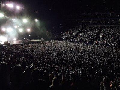 Naklejka Rear View Of People Enjoying Music Concert
