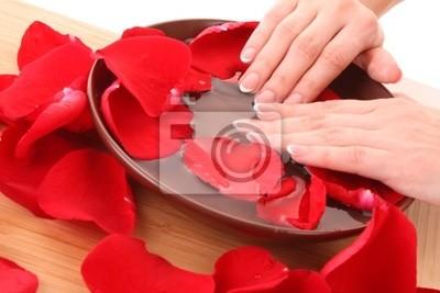 Naklejka Ręce z french manicure relaks w misce z wodą z róży