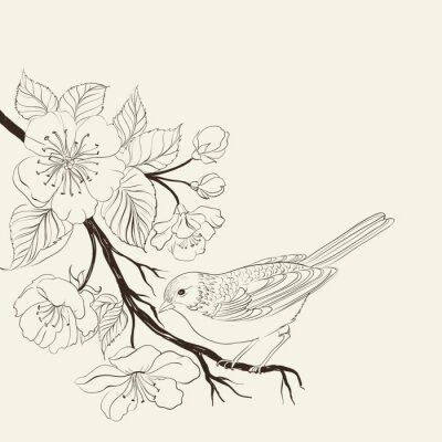 Naklejka Ręcznie rysowane ptak na sacura oddziału