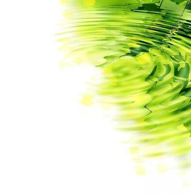 Naklejka Refleksja z liści bambusa i słońce w wodzie