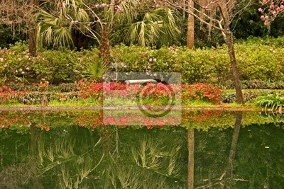 Naklejka refleksje ogród