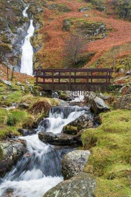 Naklejka Rhaeadr Bach Falls znajdują się w Park Narodowy Snowdonia, North Wales po silnych opadów deszczu. Most jest częścią ścieżki North Wales, popularnej długiej drogi na odległość z spacerowiczów.