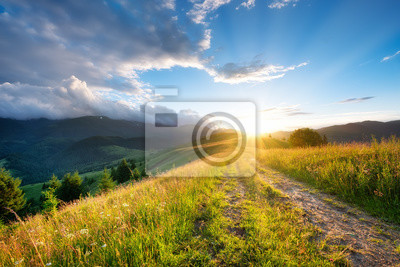 Naklejka Road in the mountains. Grass and sunset. Natural summer landscape. Sun shine and sky. Rural landscape. Mountains landscape-image