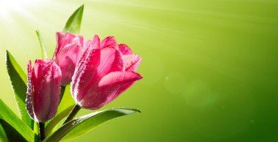Naklejka Rocznica romantycznej kwitnące