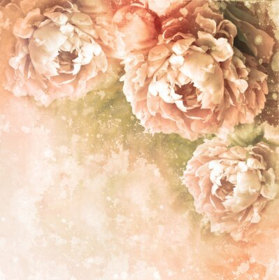 Naklejka romantic teksturowane karty z piwonii
