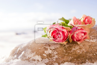 Rose na lodzie